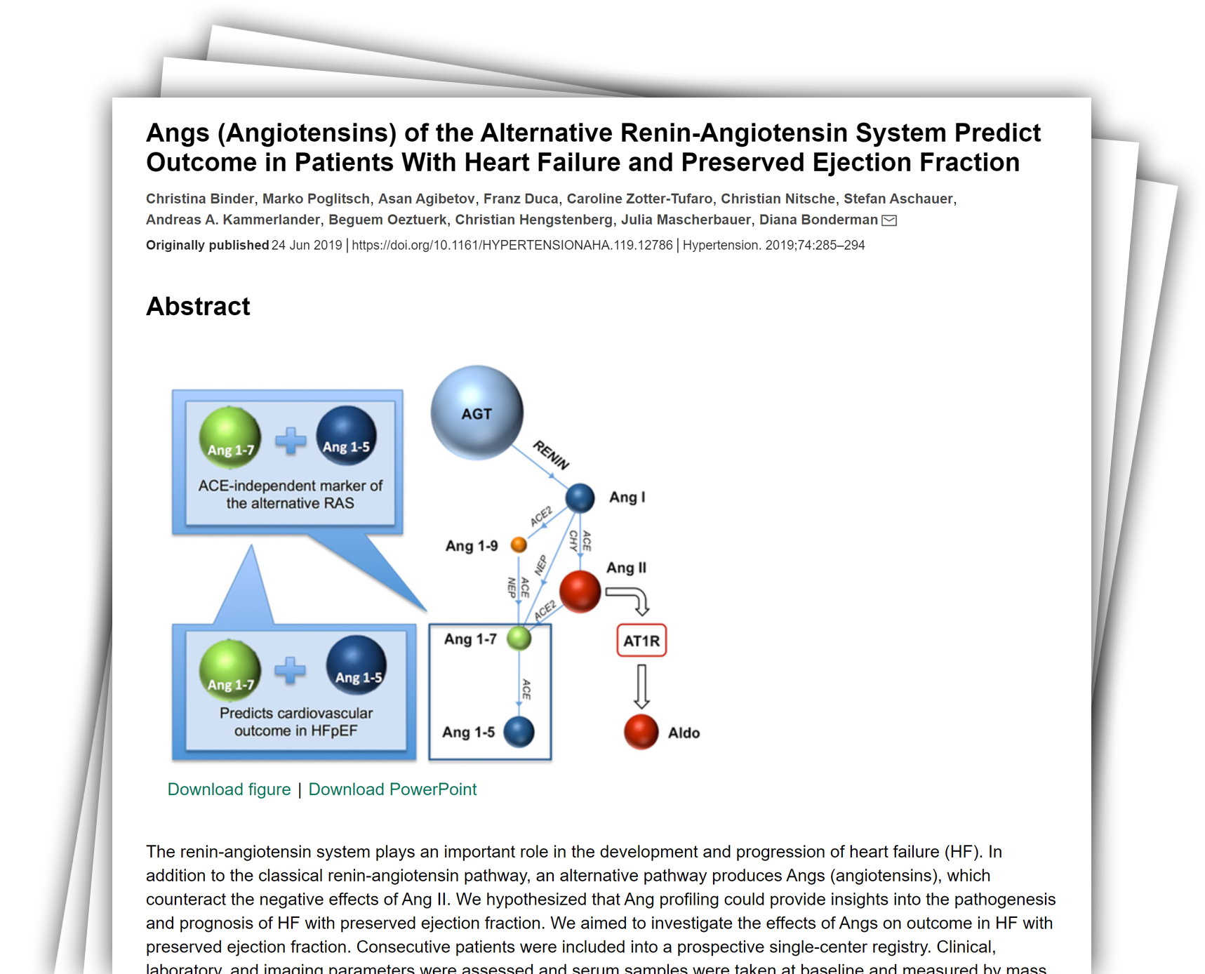 Angs (Angiotensins) of the Alternative Renin-Angiotensin System Predict Outcome in Patients With Heart Failure and Preserved Ejection Fraction